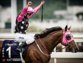 Beauty Generation has retired from Hong Kong Racing