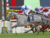 Zac Purton guides Normcore to 2020 Hong Kong Cup