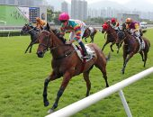 Super Axiom is hopeful of remaining unbeaten in Hong Kong