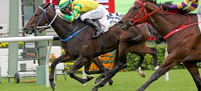 Sky Darci is favourite to win the Hong Kong Derby