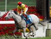 California Memory wins the G1 2013 Champion and Chater Cup